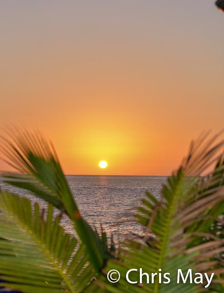 Grand Cayman 2019-8.jpg