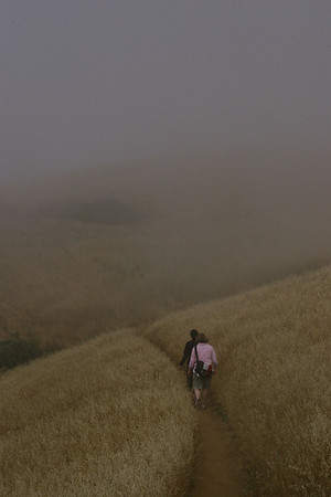 Mt. Tam Hike w/Mark and Lori 7/3/09