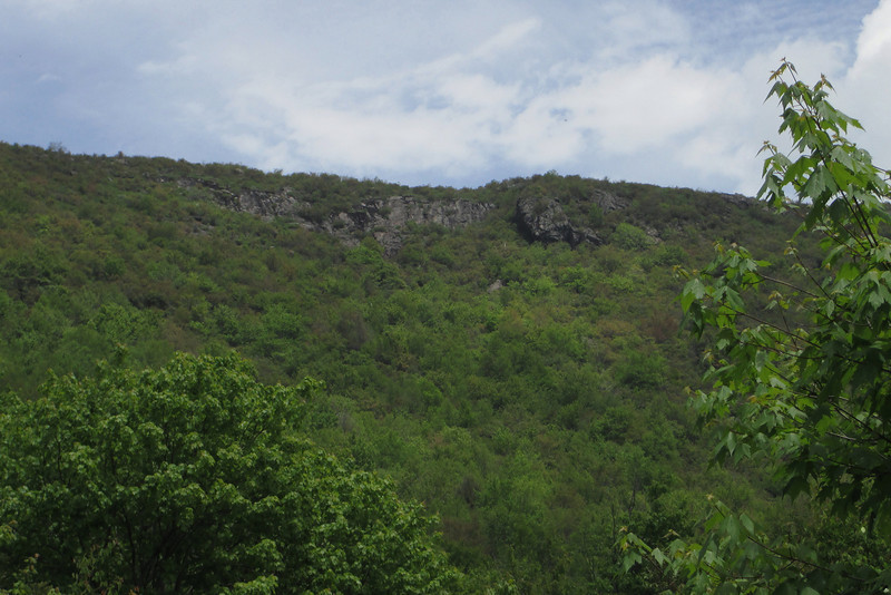 Graveyard Ridge Trail (5,440')