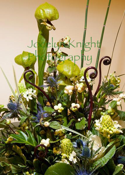 Little Festival of Flowers 2010