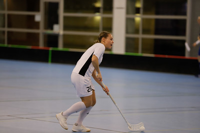 Älvsjö VS Hammarby (DM Final)