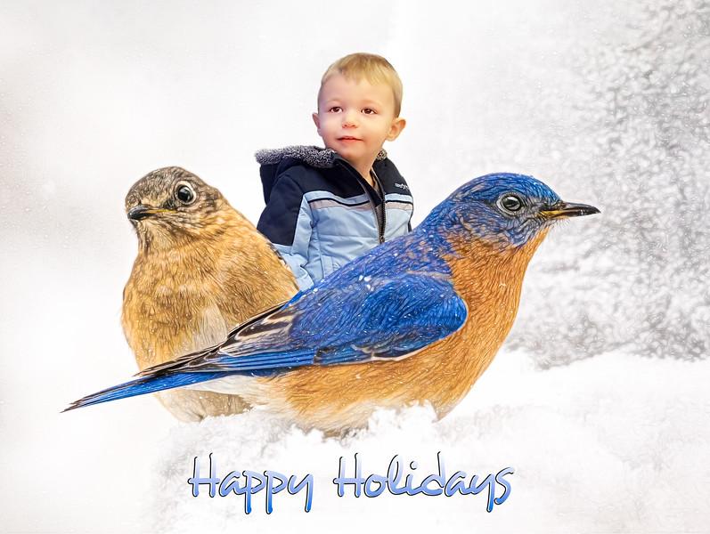 JWS_4430-MFHAPPYHOLIDAYSbeckettand birds2018.jpg