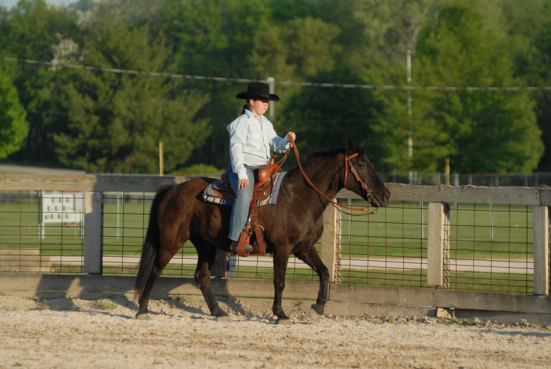 Western Pleasure/Horsemanship