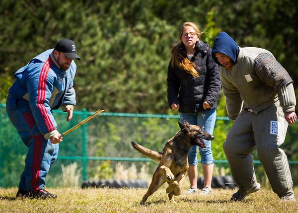 April 9, 2016 - PSA K9 Trial (Tarheel Canine PSA)
