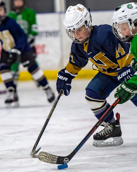 2019-02-03-Ryan-Naughton-Hockey-47.jpg
