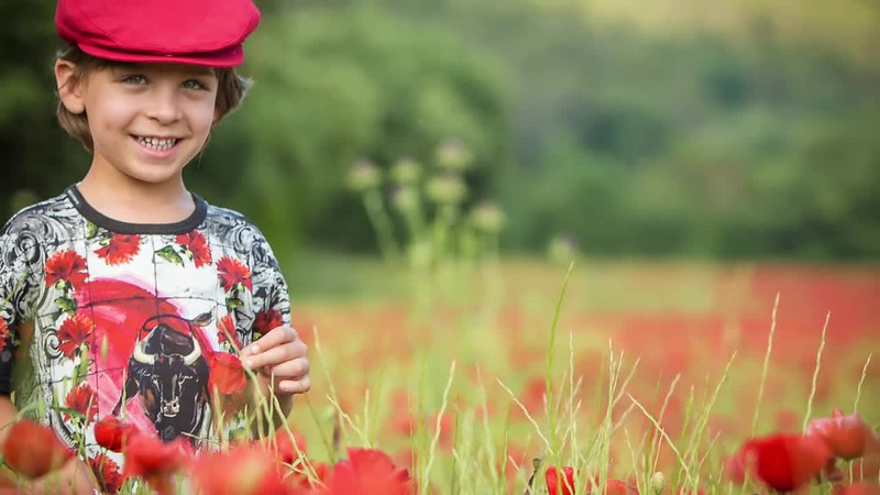 Coquelicots may 2015.mp4