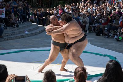 Sumo Champions Exhibition 2017