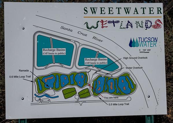 Sweetwater Wetlands Feb 2020