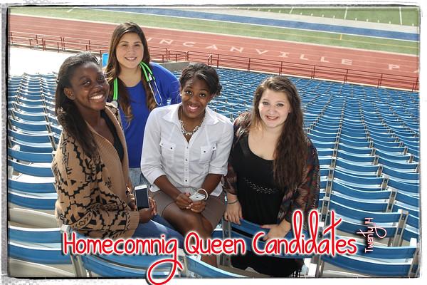 HC Queen NS.jpg