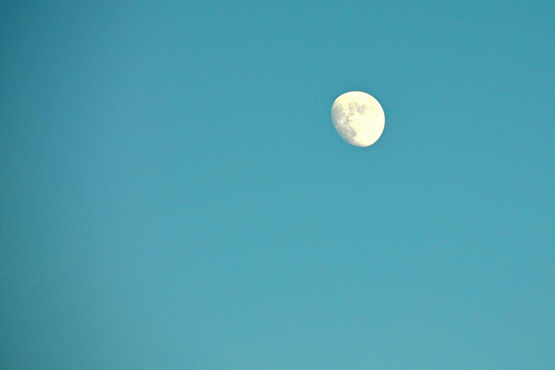 2012-11-21 ––– I needed a bigger lens for this shot. I've always liked day time moons. If you zoom in you can see a little more detail in the moon's surface.