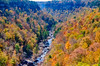 Little River as seen from Wolf Creek Overlook in the fall. -  Little River Canyon National Preserve, Alabama