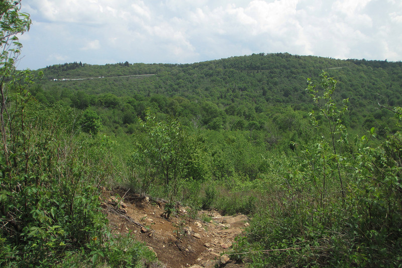 Graveyard Ridge Connector Trail (5,200')