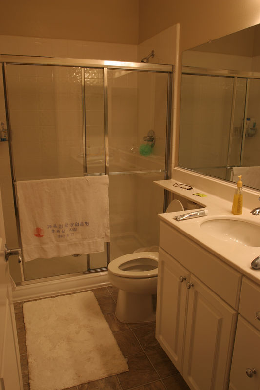 The guest bathroom with a very good sized shower stall.