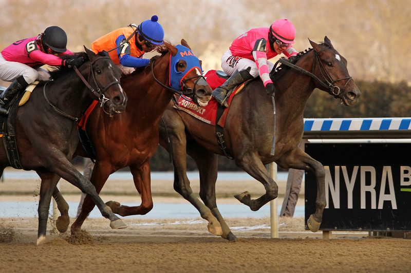 Tax (Arch) and jockey Junior Alvarado win the Withers Stakes (Gr III) at Aqueduct Racetrack 2/2/19. Trainer: Danny Gargan. Owner: Hugh Lynch & Corms Racing Stable