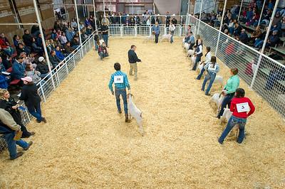 2018 Gerlach Livestock