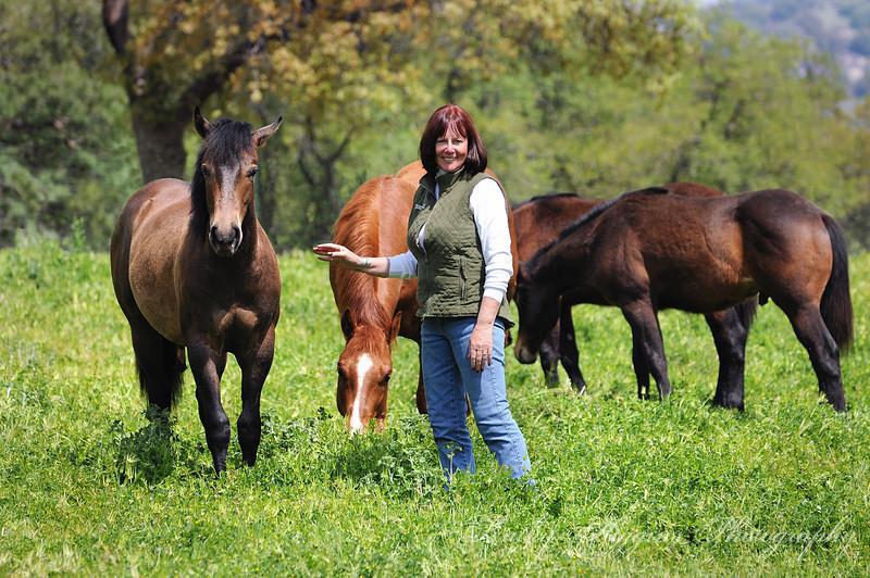 Fairlea 2013 (fillies, colts & ranch beauty)