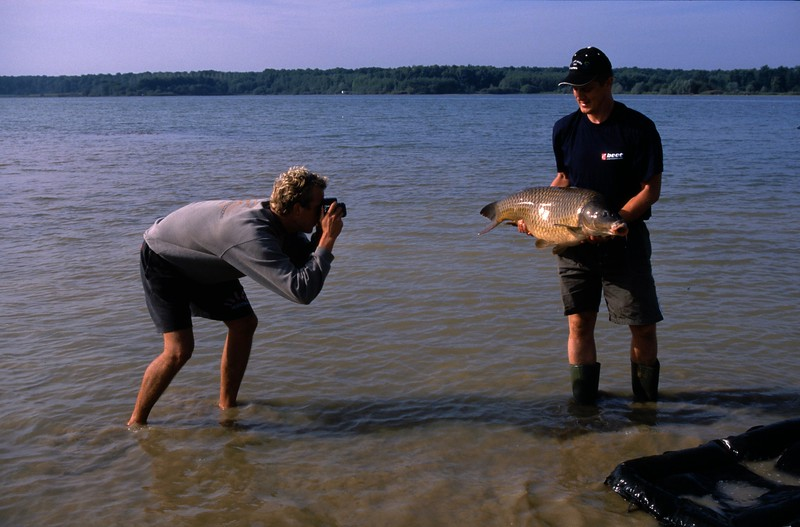WCC03-benslides19 - Photographing a common carp