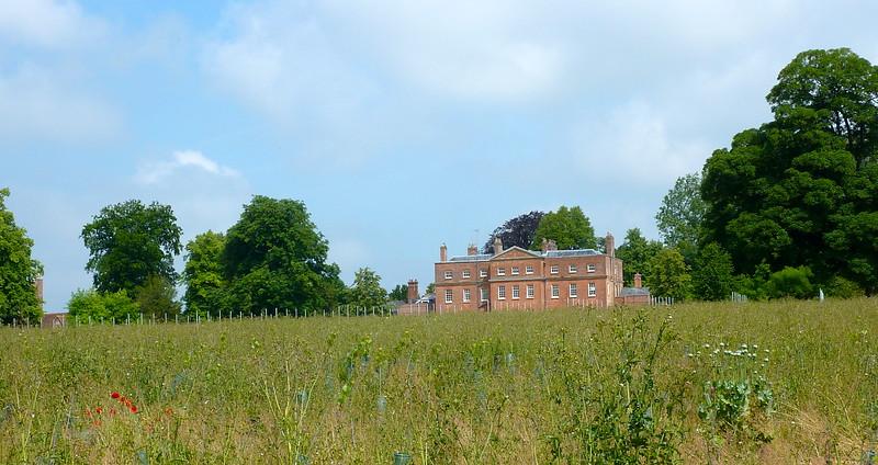 ALresford meadow.jpg