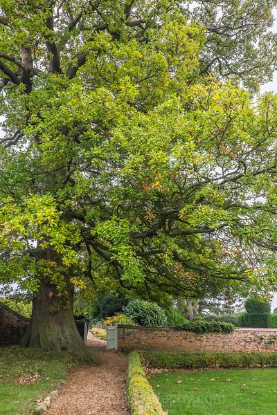 Hob Green autumn-4.jpg