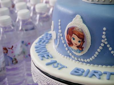 Breanne's 1st Birthday