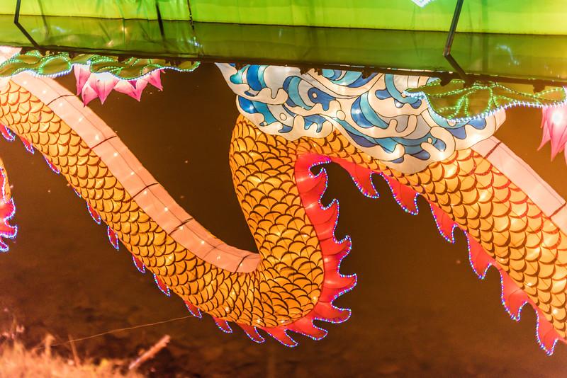 Chinese Lantern Festival-5280.jpg