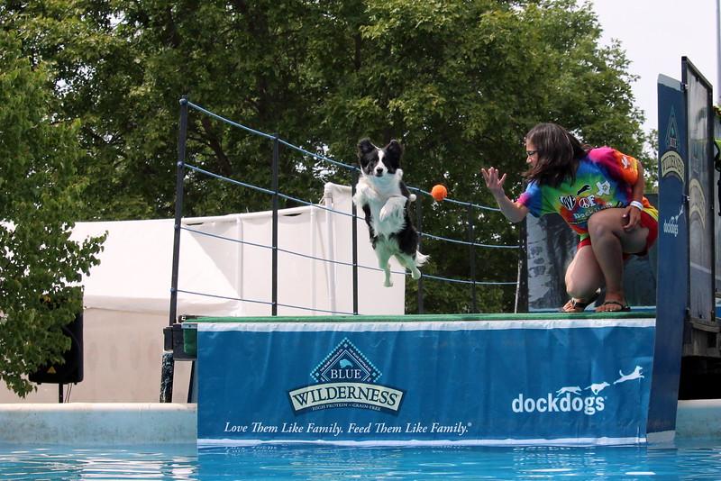 2015.8.6 Winnebago County Fair Dock Dogs (38).JPG
