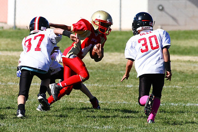 Judge Football PeeWee vs Park City • 10-26-2013