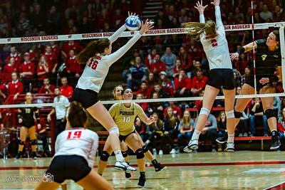 UW Sports - Volleyball [d] November 09, 2018