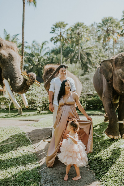 VTV_family_photoshoot_elephants_Bali_ (29).jpg