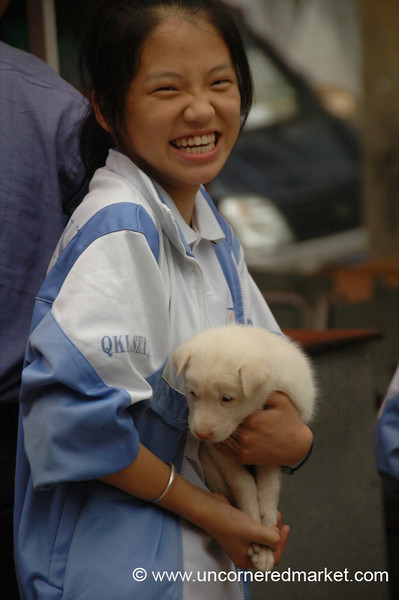 Chinese Girl and Her Puppy - Guizhou Province, China
