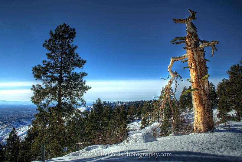 Foothills near Boise Idaho.