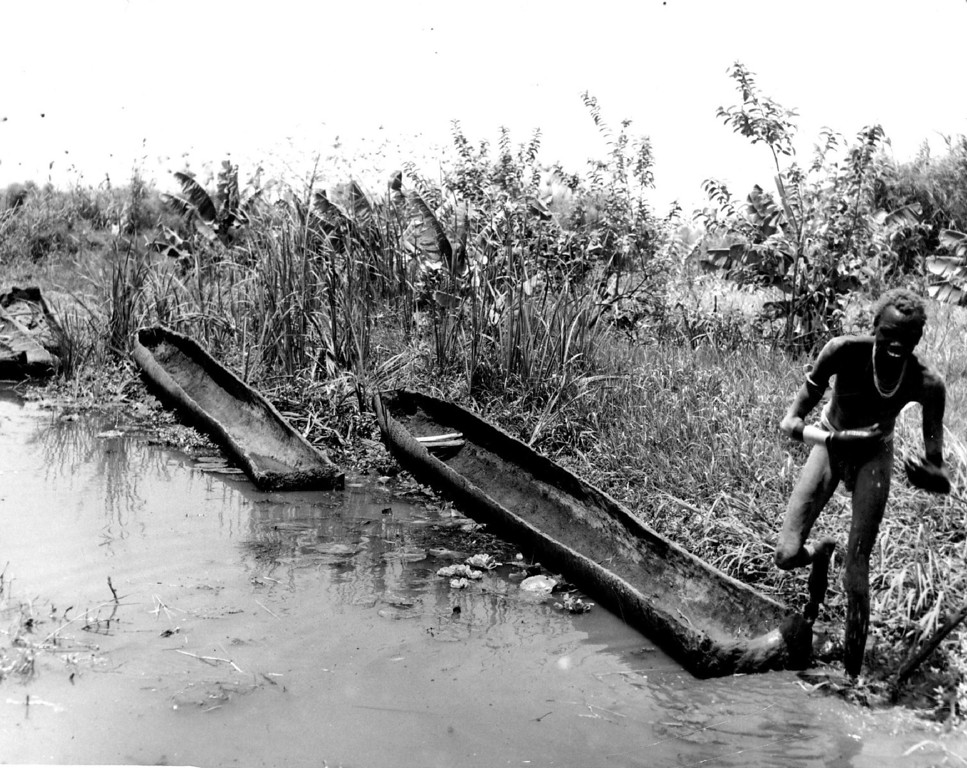 . 5-15-1950  Dugout canoes built from logs are still the favorite native means of water transportation on Africa\'s huge lake Victoria. The canoes are burned and hewn from a single log and are extremely precious to handle.   Credit: Denver Post