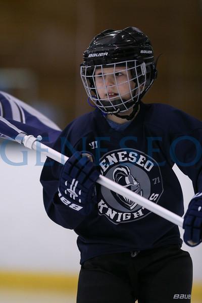 Ice Hockey vs. Stevenson (Photos by Ben Gajewski)