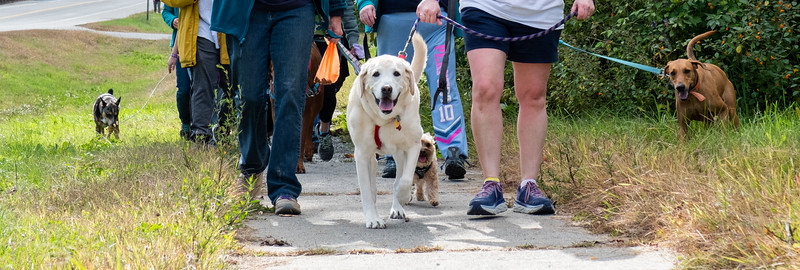 09-29-18-Walk for Animals (Brattleboro Reformer)