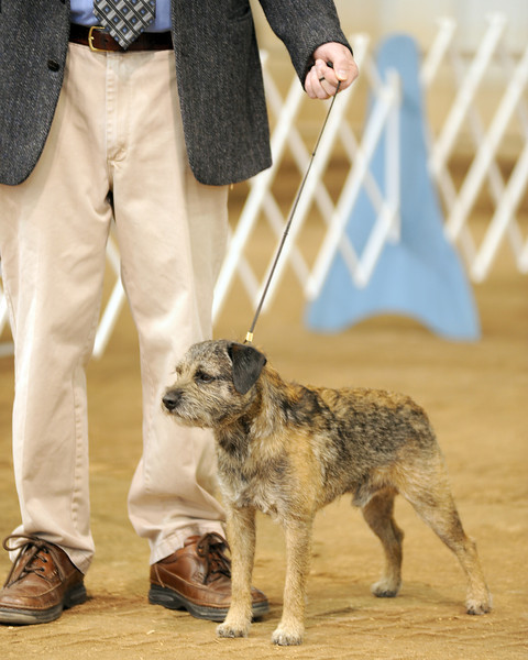 High Plains Kennel Club  2013
