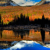 Beaver Pond in Rocky Mountain National Park