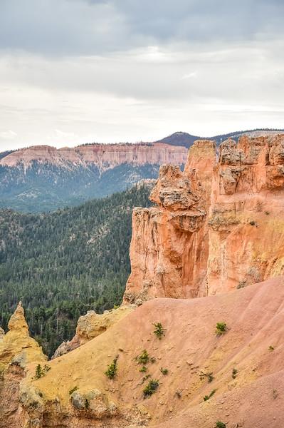 2019 Grand Canyon-155.jpg