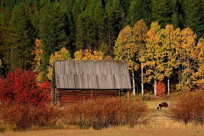 Montana Barns and Farmland