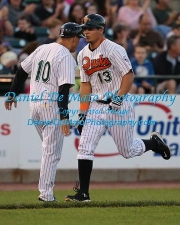 2013 Minor League Professional Baseball