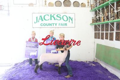 2021 Jackson County Fair - Sheep Show