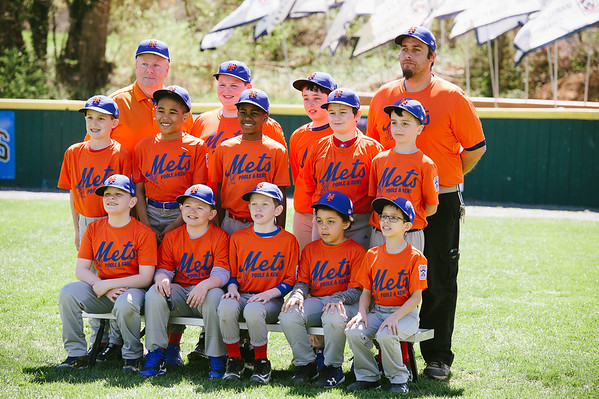 FNLL Mets Spring 2017