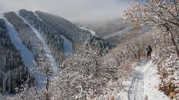 November Froze