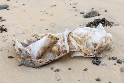 Les Pecqueries Bay and Portinfer beach litter