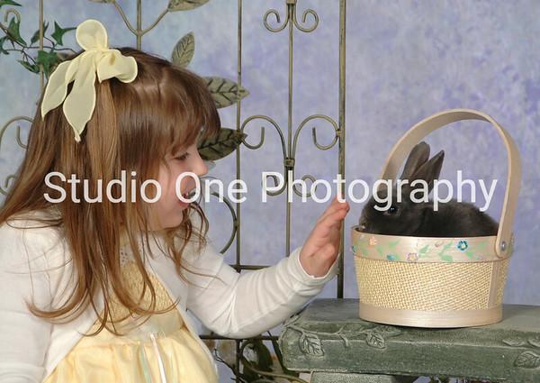 bunnies 041