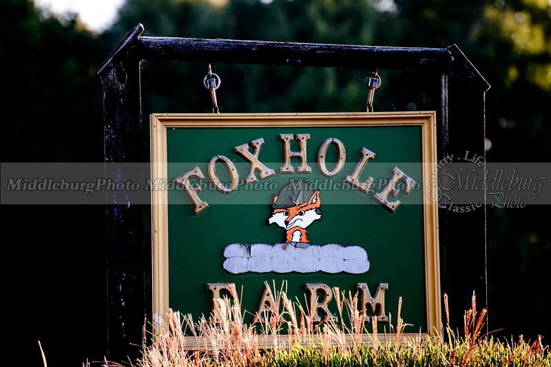 MH. Foxhole 10-17
