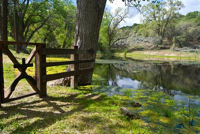 Beale Adobe Tejon Ranch Hike 5-2-10