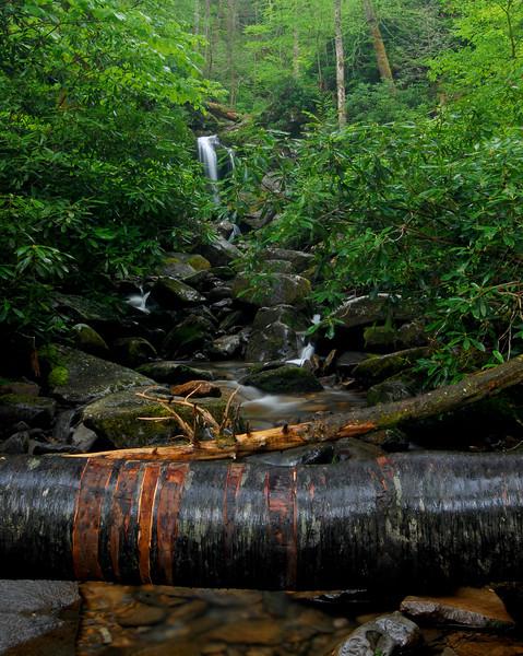 grotto falls 02.jpg
