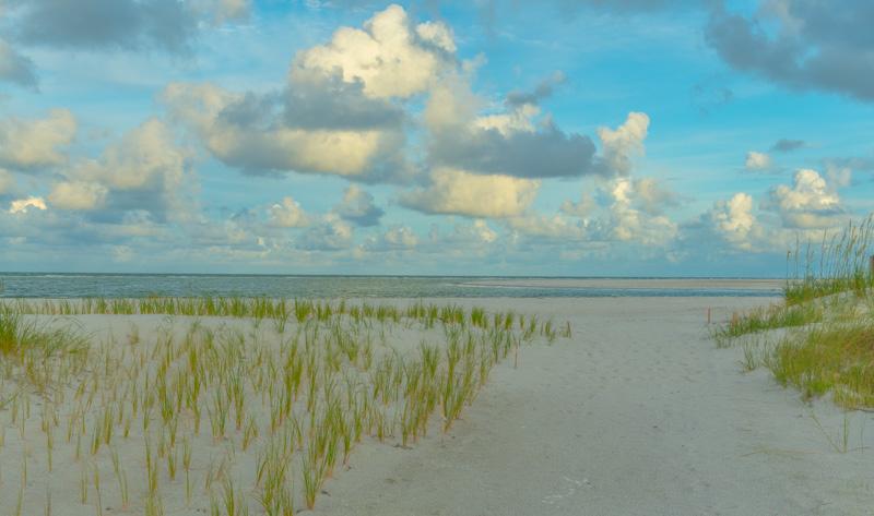 SEA AND SKY   8