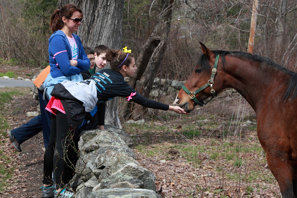 From left: Julie, Max, Alec, and Abby Van Wormer stop to feed grass to a horse along the way.