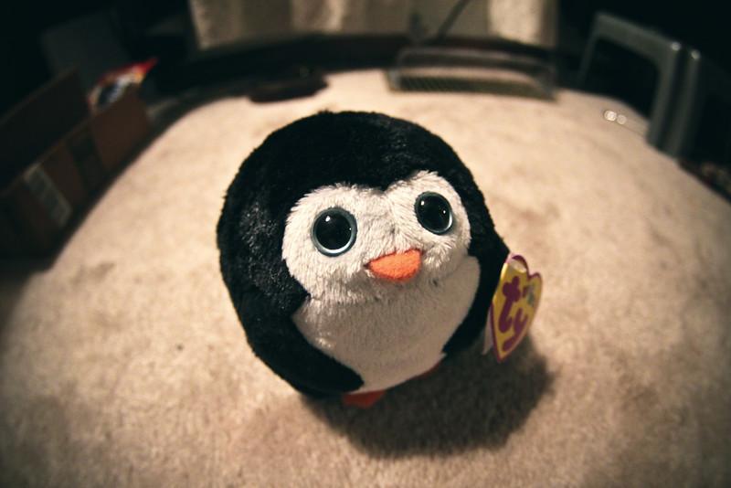 06/29/2012 - Penguin